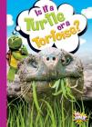 Is It a Turtle or a Tortoise? (Can You Tell the Difference?) Cover Image