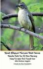 Kisah Hikayat Maryam Binti Imran Ibunda Nabi Isa AS Dan Burung Yang Tercipta Dari Tanah Liat Edisi Bahasa Inggris Cover Image