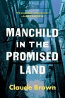Manchild in the Promised Land Cover Image