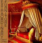 Extraordinary Furniture Cover Image