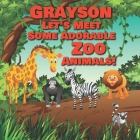 Grayson Let's Meet Some Adorable Zoo Animals!: Personalized Baby Books with Your Child's Name in the Story - Zoo Animals Book for Toddlers - Children' Cover Image