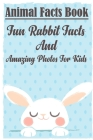 Animal Facts Book Fun Rabbit Facts And Amazing Photos For Kids: Rabbit Pet Care Cover Image
