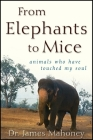 From Elephants to Mice: Animals Who Have Touched My Soul Cover Image