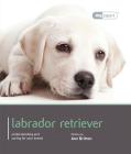 Labrador Retriever (Dog Expert) Cover Image