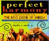 Perfect Harmony: A Musical Journey with the Boys Choir of Harlem Cover Image