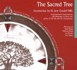 Sacred Tree: Reflections on Native American Spirituality Cover Image