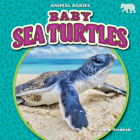 Baby Sea Turtles Cover Image