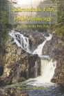 Adirondack Fifty Falls Challenge: A Guide to the Fifty Falls Cover Image