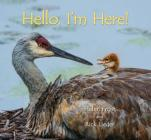 Hello, I'm Here! Cover Image