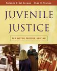 Juvenile Justice: The System, Process and Law Cover Image
