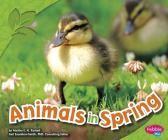 Animals in Spring (Pebble Plus: All about Spring) Cover Image