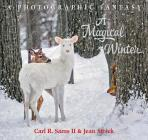 A Magical Winter Cover Image