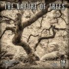 2020 the Nature of Trees 16-Month Wall Calendar: By Sellers Publishing Cover Image