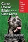 Cane Corso Bible And the Cane Corso: Your Perfect Cane Corso Guide Covers Cane Corso, Cane Corso Puppies, Cane Corso Dogs, Cane Corso Training, Cane C Cover Image