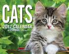 Cats 2017 Mini Day-to-Day Calendar Cover Image