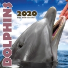 Dolphins 2020 Mini Wall Calendar Cover Image