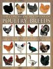 The Concise Encyclopedia of Poultry Breeds: An Illustrated Directory of Over 100 Chickens, Ducks, Geese and Turkeys, with 275 Photographs Cover Image