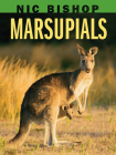 Nic Bishop: Marsupials Cover Image