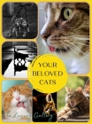 Your Beloved Cats: The Best Selection of 37 Cat Photos by Manhattan's Top Photographers Cover Image