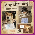 Dog Shaming 2022 Wall Calendar Cover Image