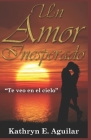 Un Amor Inesperado: Te veo en el Cielo Cover Image