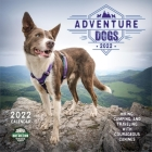 Adventure Dogs 2022 Wall Calendar: Hiking, Camping, and Traveling with Courageous Canines Cover Image