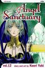 Angel Sanctuary, Vol. 12 Cover Image