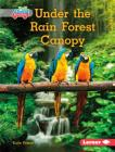 Under the Rain Forest Canopy Cover Image
