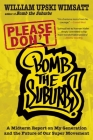 Please Don't Bomb the Suburbs: A Midterm Report on My Generation and the Future of Our Super Movement Cover Image