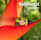 Rainforest: Endangered (Abandoned Places) Cover Image