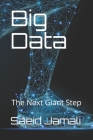 Big Data: The Next Giant Step Cover Image