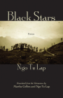 Black Stars Cover Image