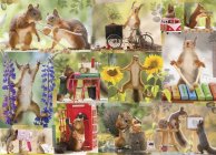 Gettin' Squirrelly 1000-Piece Puzzle Cover Image