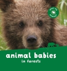 Animal Babies in Forests Cover Image