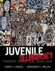 Juvenile Delinquency: Theory, Practice, and Law Cover Image