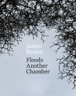 Floods Another Chamber Cover Image