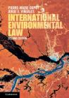 International Environmental Law Cover Image