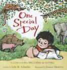 One Special Day (A Story for Big Brothers and Sisters) Cover Image