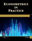 Econometrics in Practice Cover Image