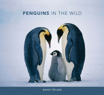 Penguins in the Wild Cover Image