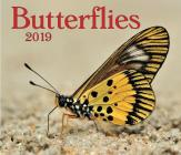 Butterflies 2019 Cover Image