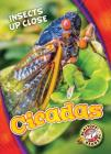 Cicadas (Insects Up Close) Cover Image