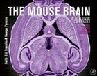 The Mouse Brain in Stereotaxic Coordinates [With Dvdrom] Cover Image