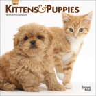 Kittens & Puppies 2021 Mini 7x7 Cover Image