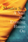 A Nail the Evening Hangs on Cover Image