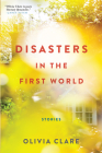 Disasters in the First World: Stories Cover Image