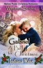 Gabriel - A Baby for Christmas Cover Image