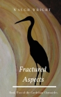 Fractured Aspects Cover Image
