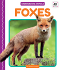 Foxes Cover Image
