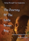 The Journey of The Little Brown Boy Cover Image